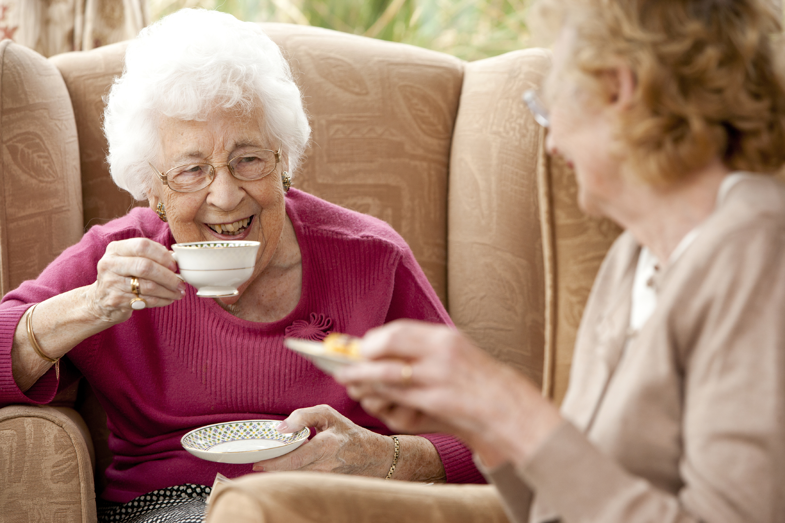 Know The Signs: How to tell if your grandparent has become an ...