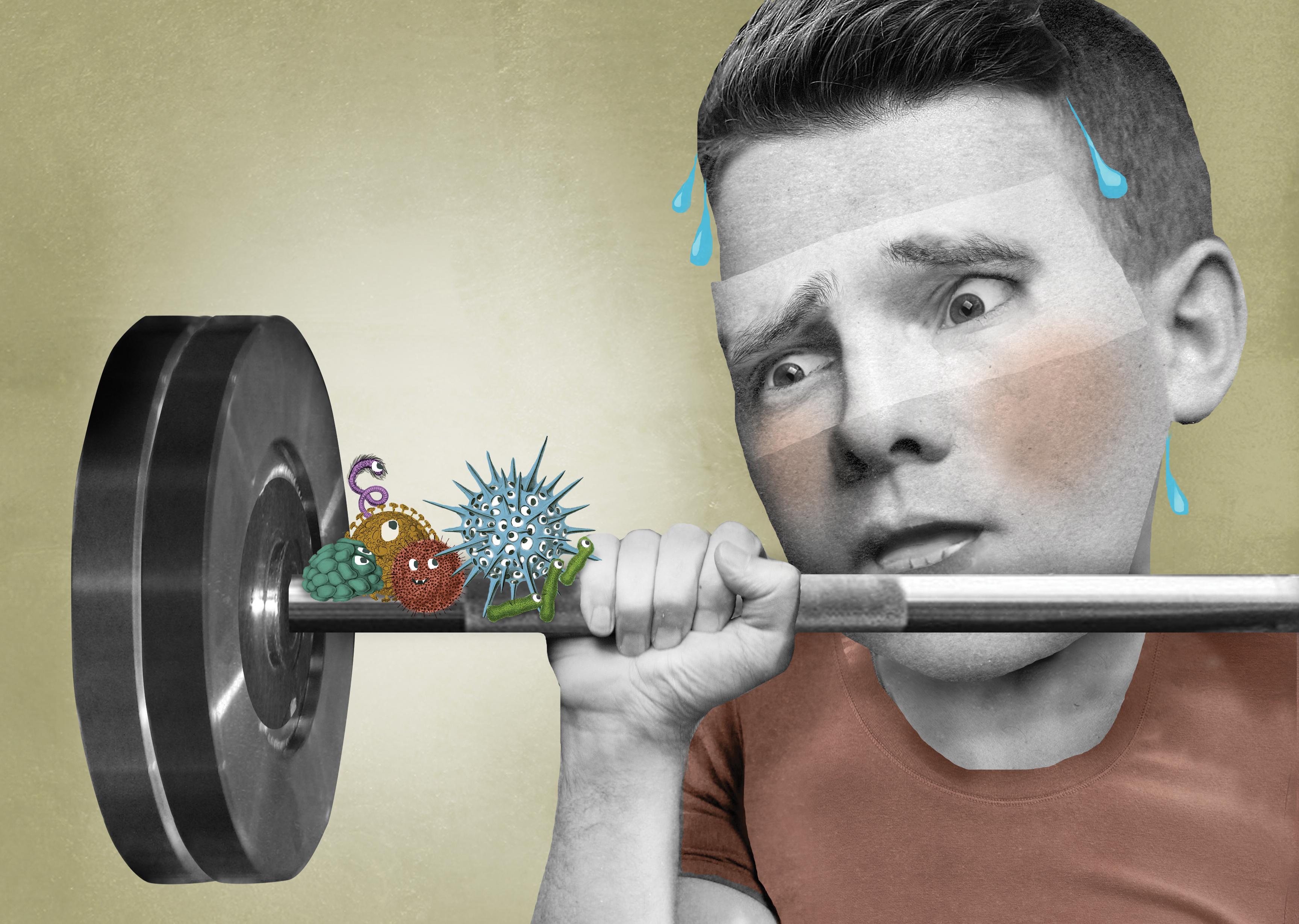 """Résultat de recherche d'images pour """"gym et contamination"""""""