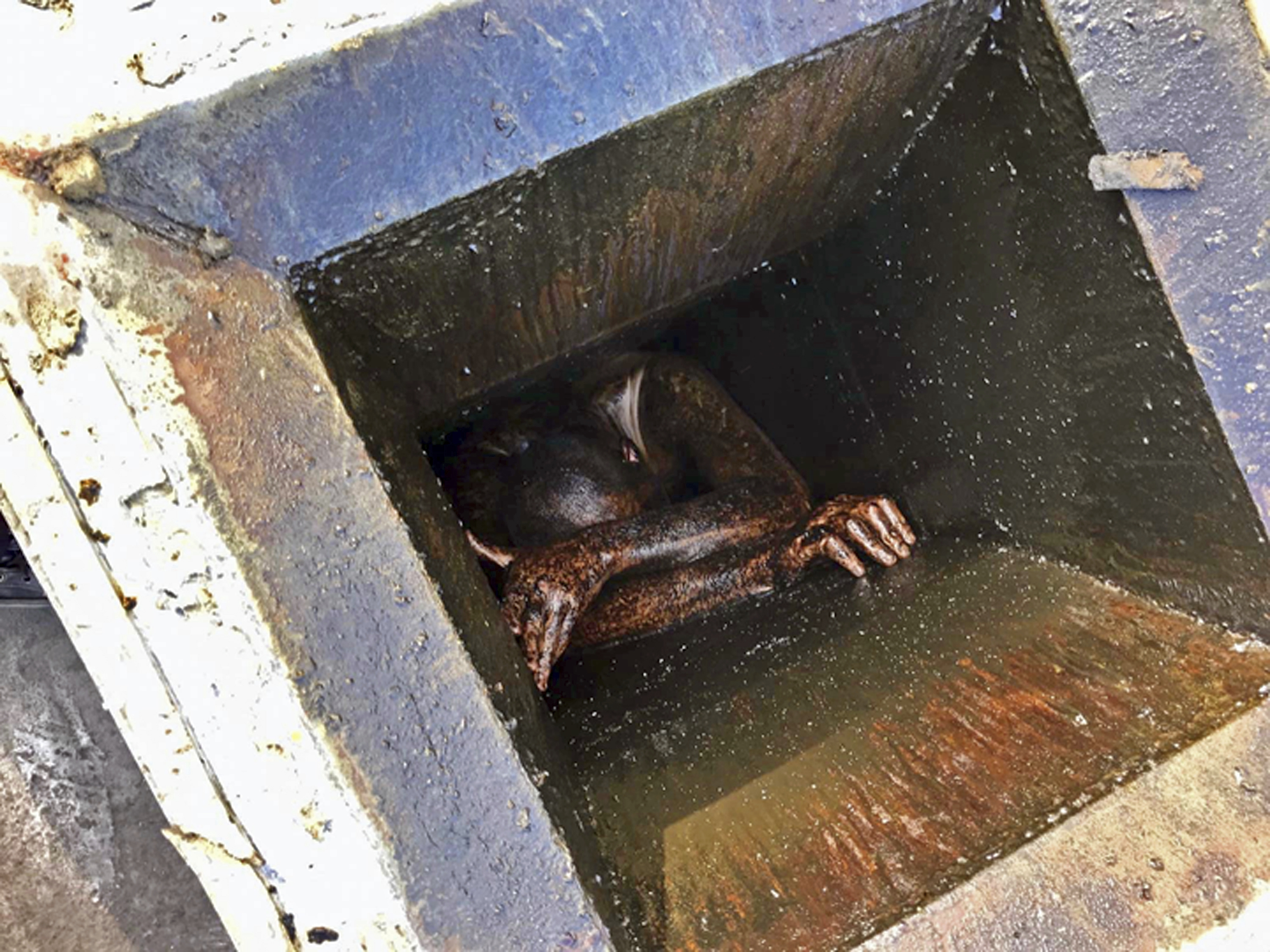Man Trapped In Grease Vent Of San Lorenzo Chinese Restaurant For Two Days The Washington Post