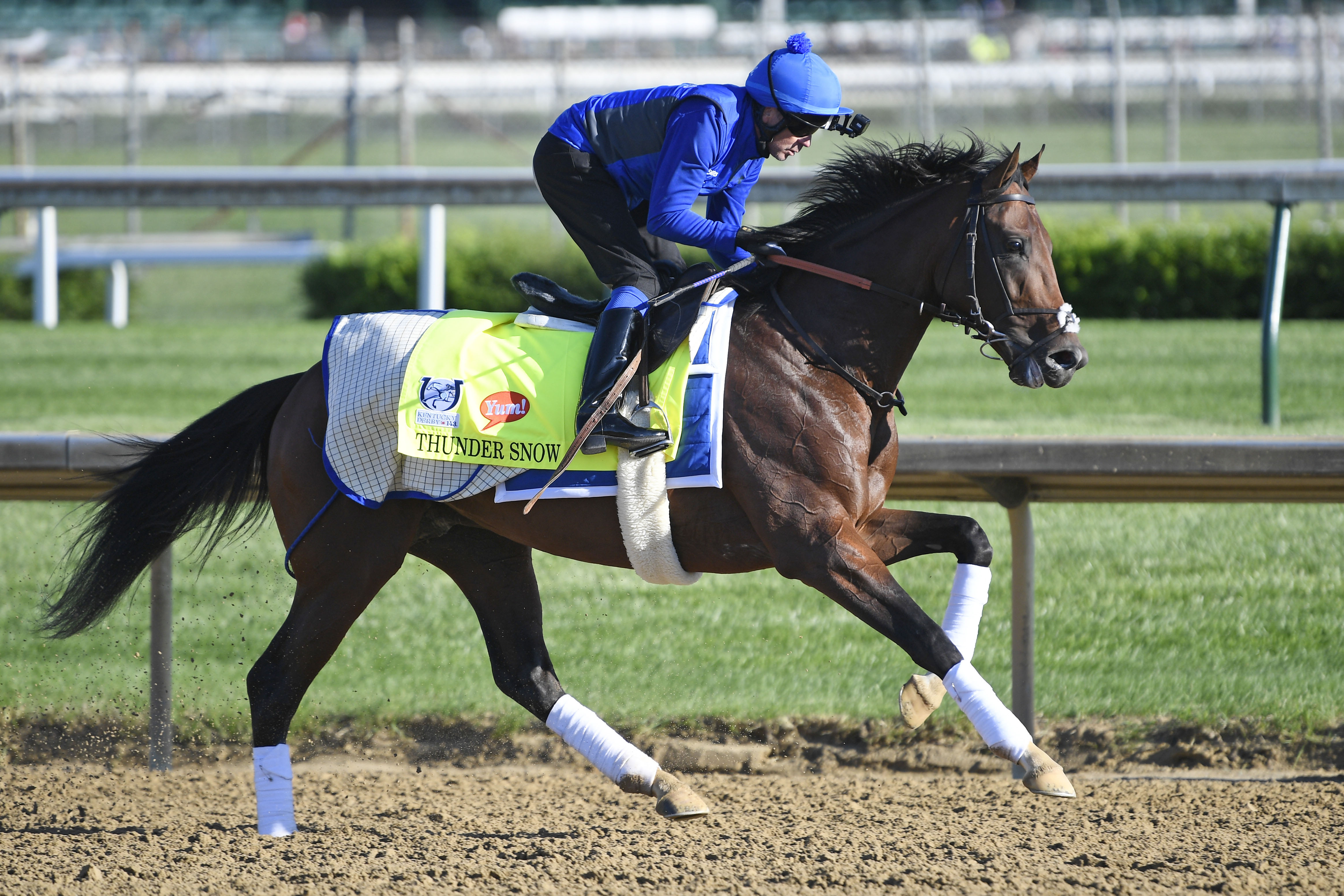 Foreign born horses are a mystery at the Kentucky Derby, 25 years ...