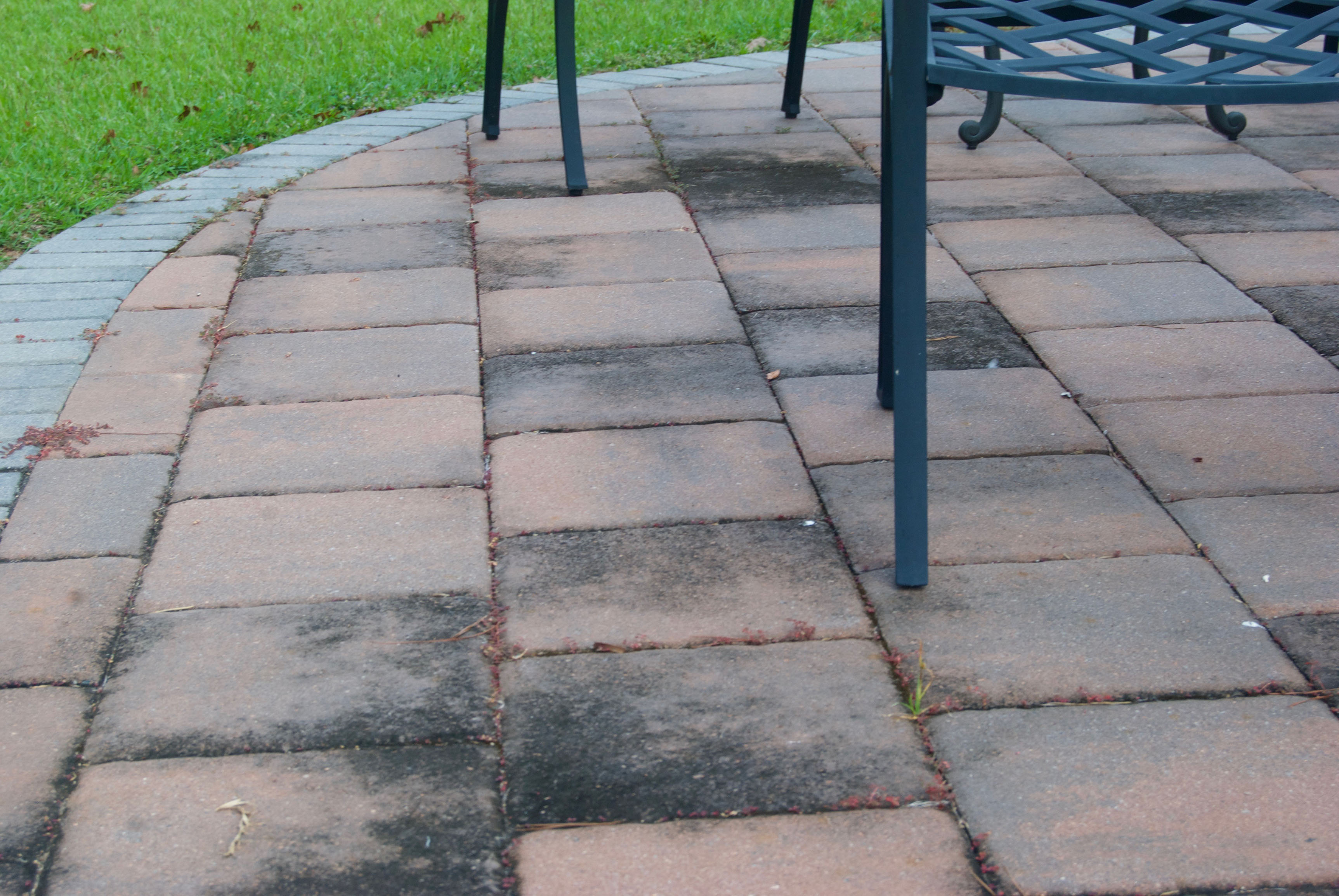 How To Prevent Mold And Mildew From Growing On Your Patio The