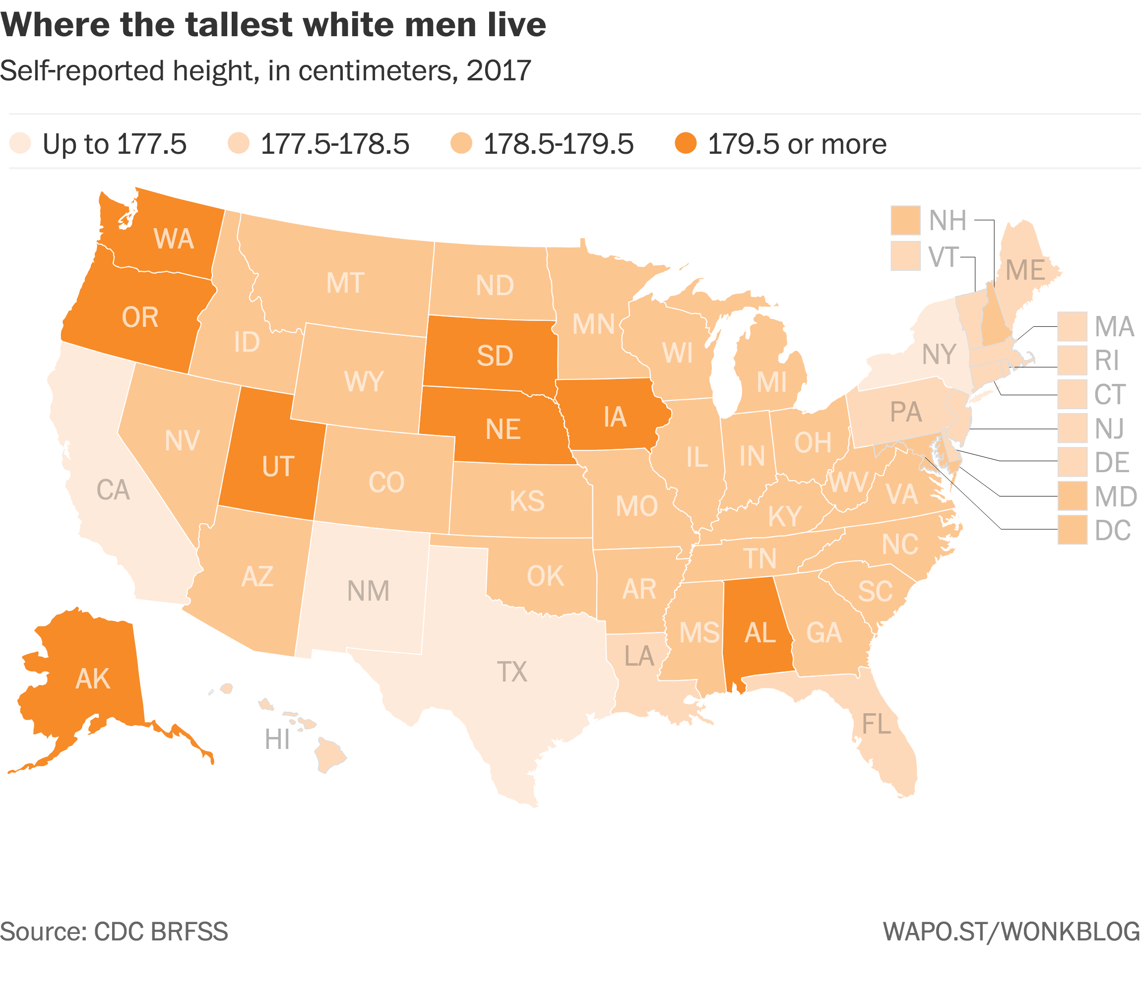 Height male an american of average the Are You