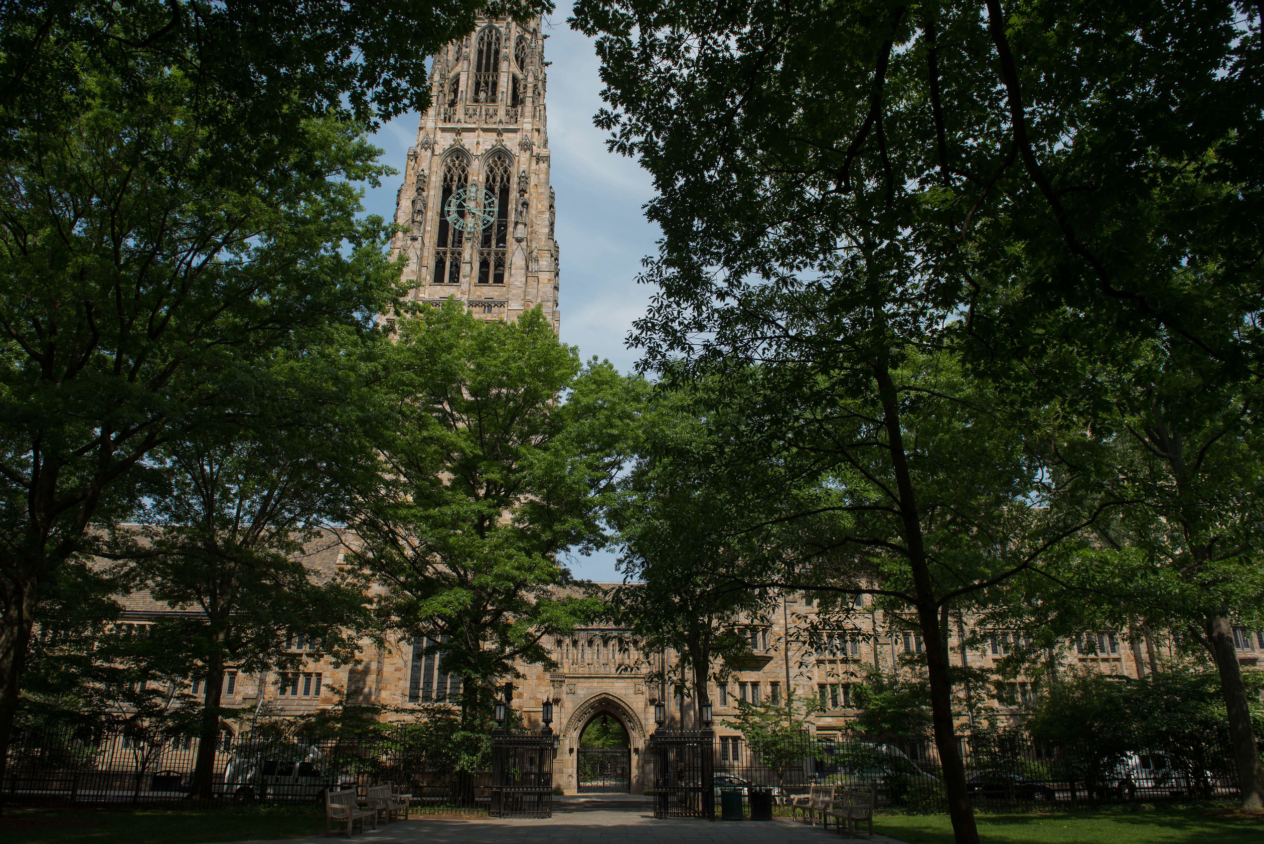 cover letter yale law