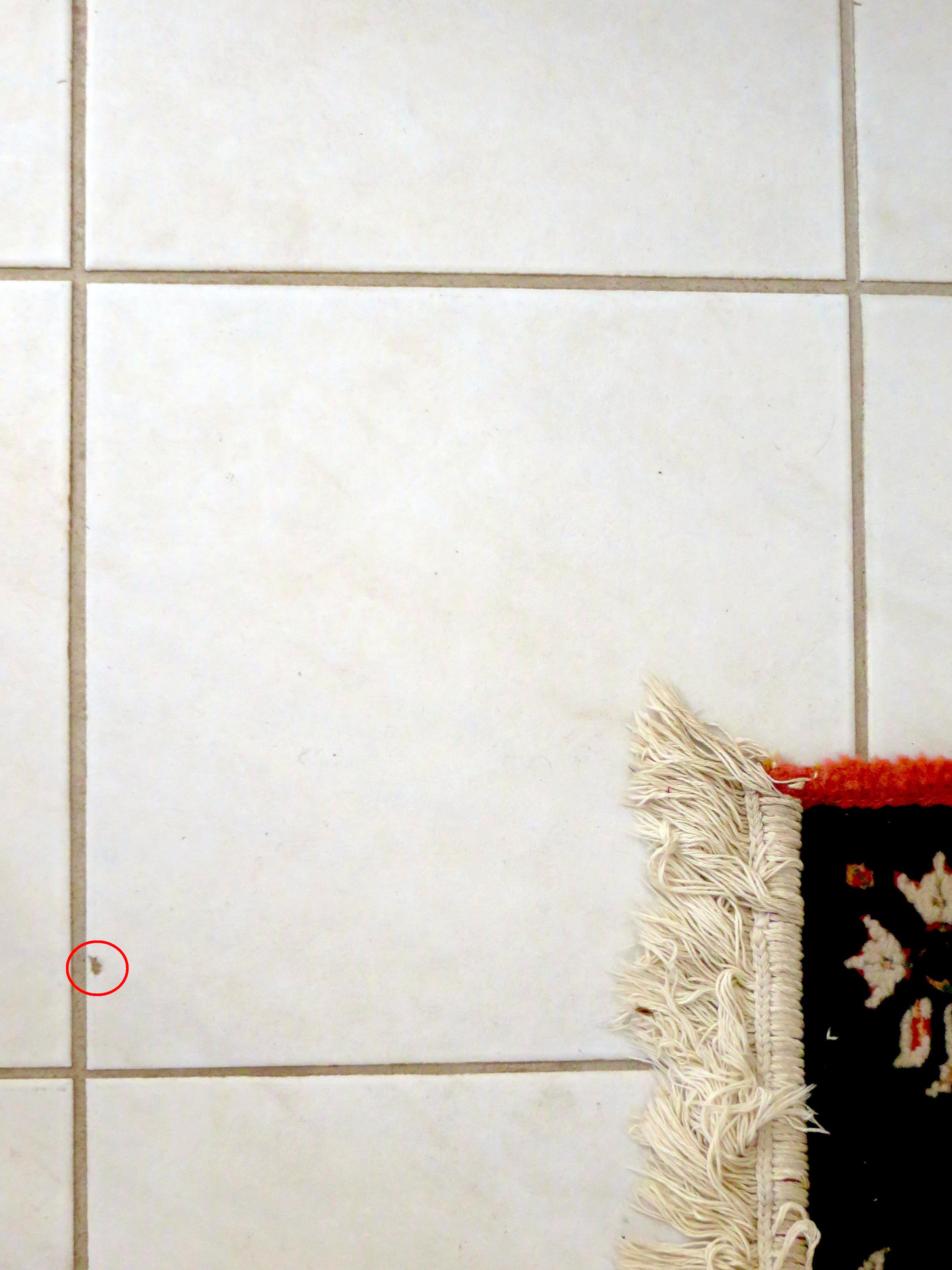 How To Repair A Chipped Ceramic Tile The Washington Post