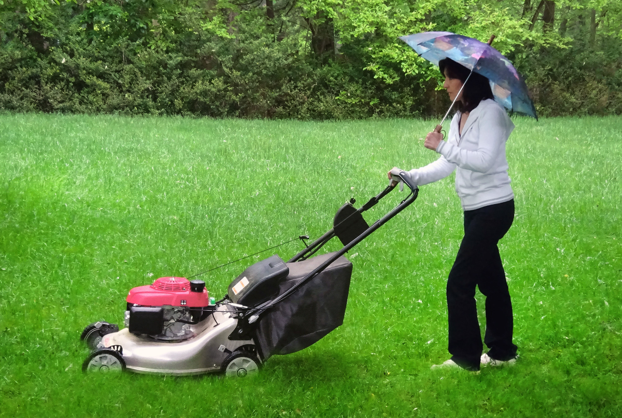 Great Ideas On Mowing A Wet Lawn