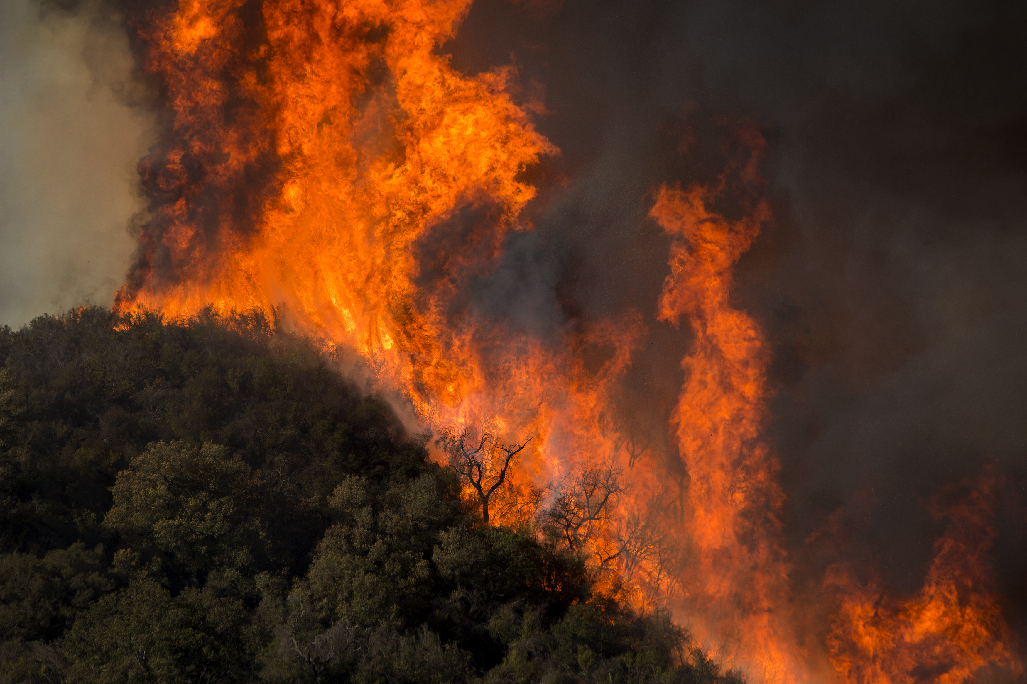 Trump tweets, death toll rises in California wildfires - The