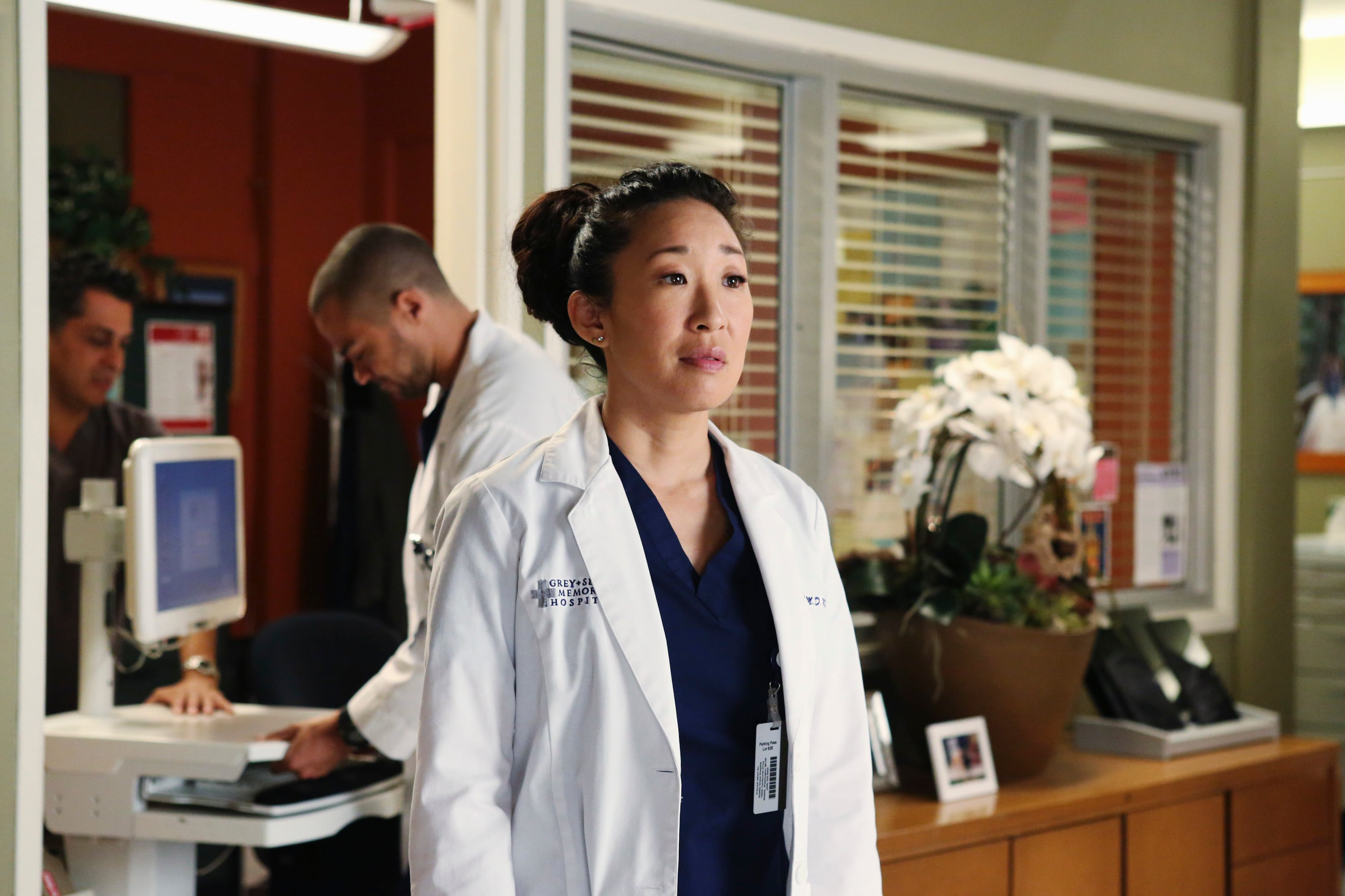 Seven things you didn't know about Sandra Oh, who played Cristina Yang on  'Grey's Anatomy' - The Washington Post