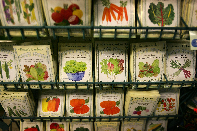 An Onslaught Of Orders Engulfs Seed Companies Amid Coronavirus