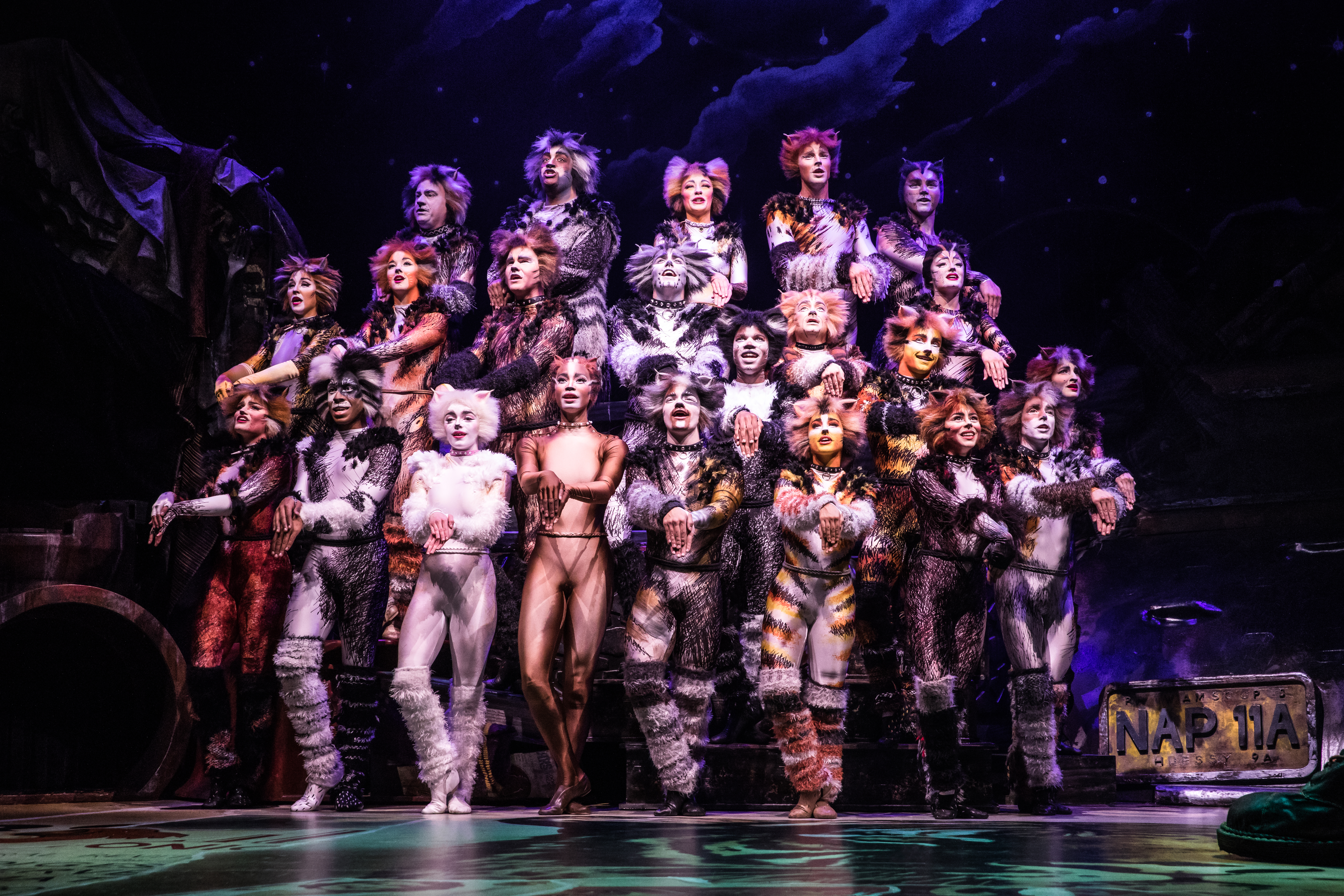 Cats\u0027 at the Kennedy Center The musical seems to be