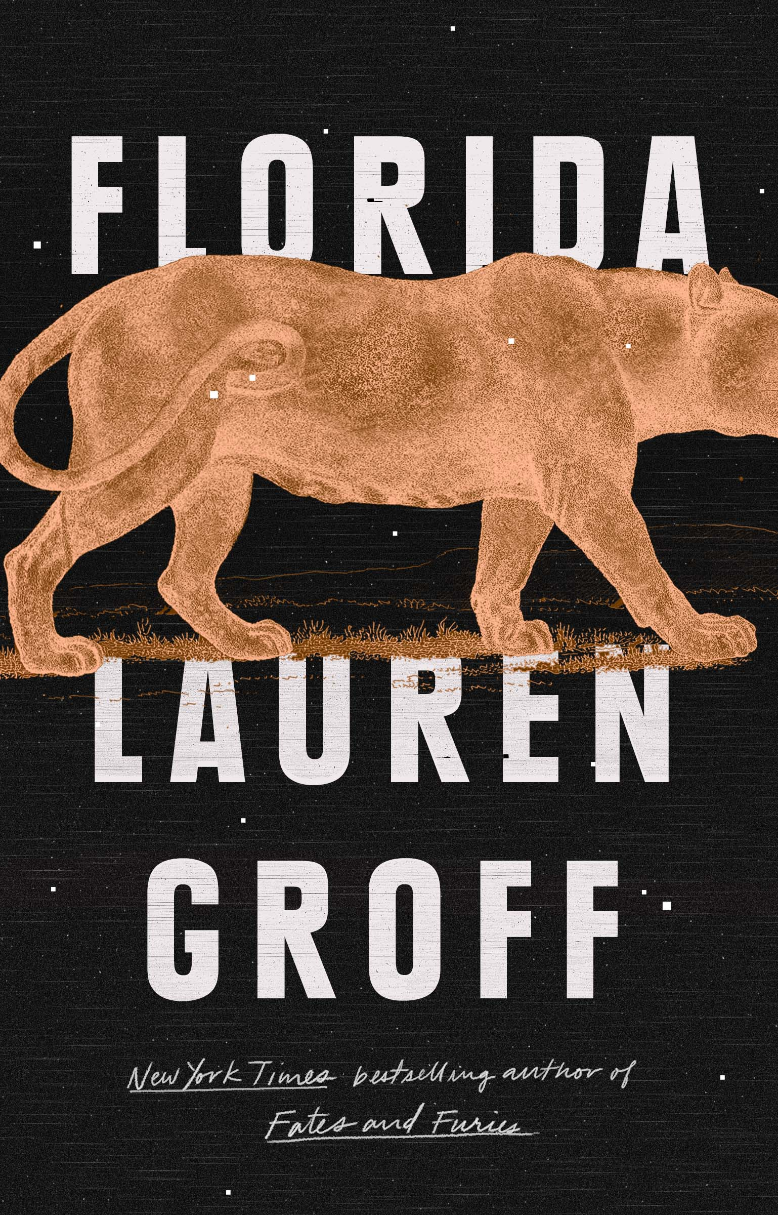 Book Review Florida By Lauren Groff The Washington Post