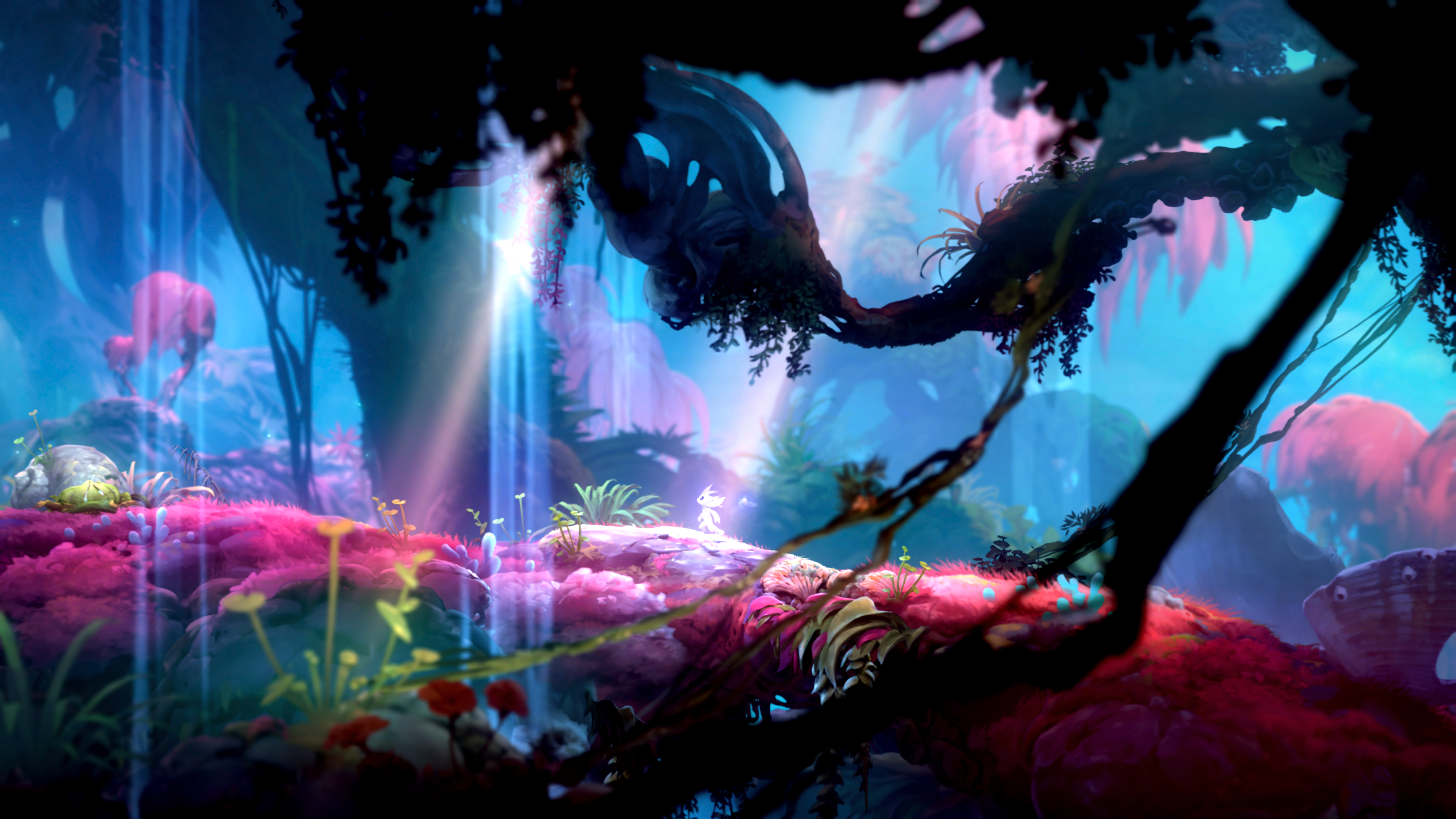 Ori and the Will of the Wisps video game review - The Washington Post