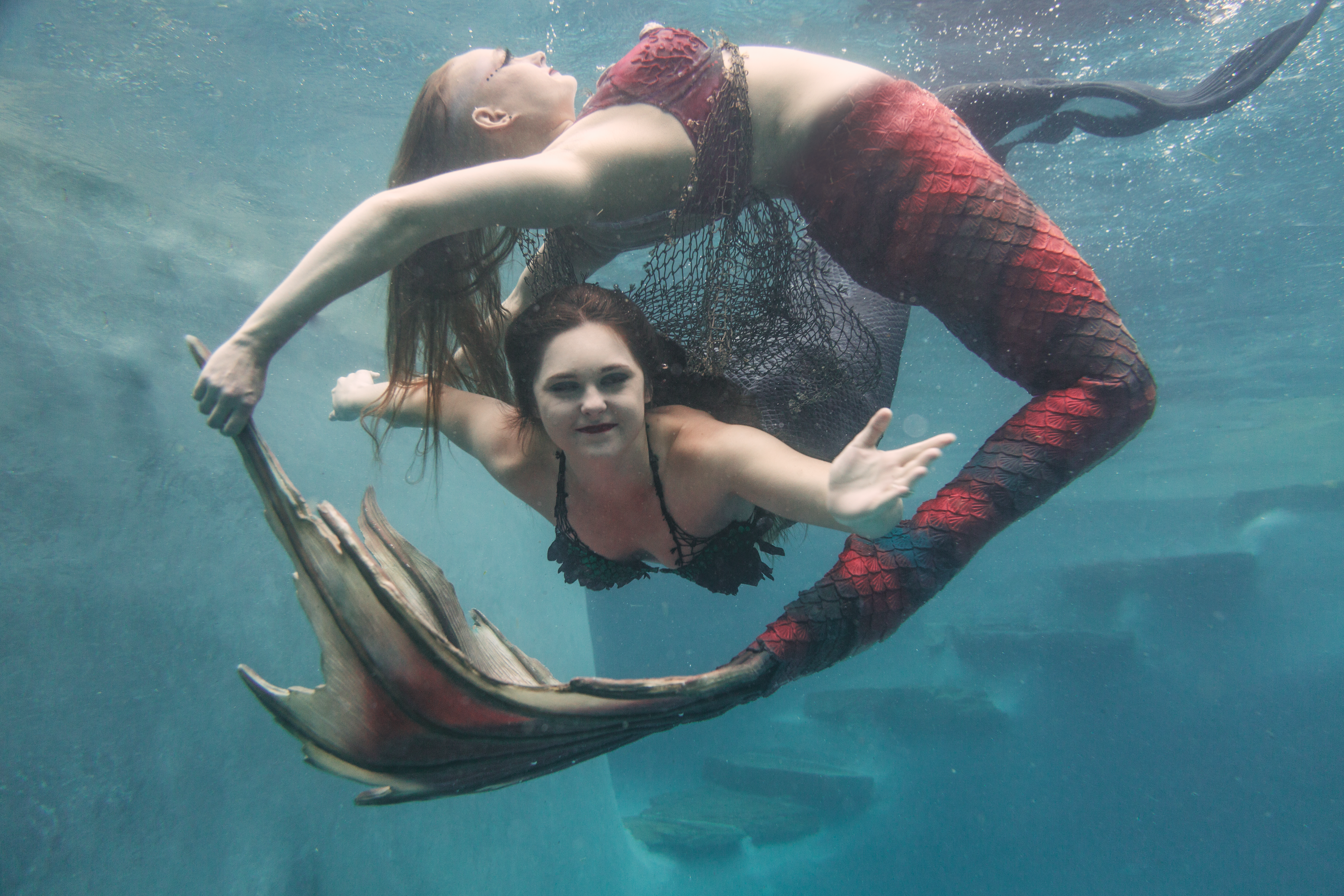 Mermaiding: It's a thing, and it's coming to a pool near you